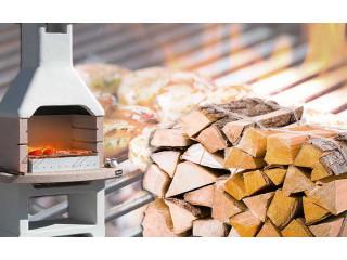 Топливо для барбекю и мангала: уголь или дрова?